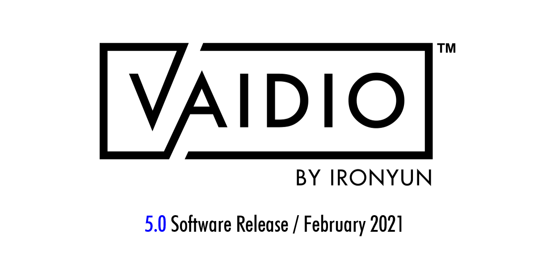 Vaidio Logo - 5.0 Release